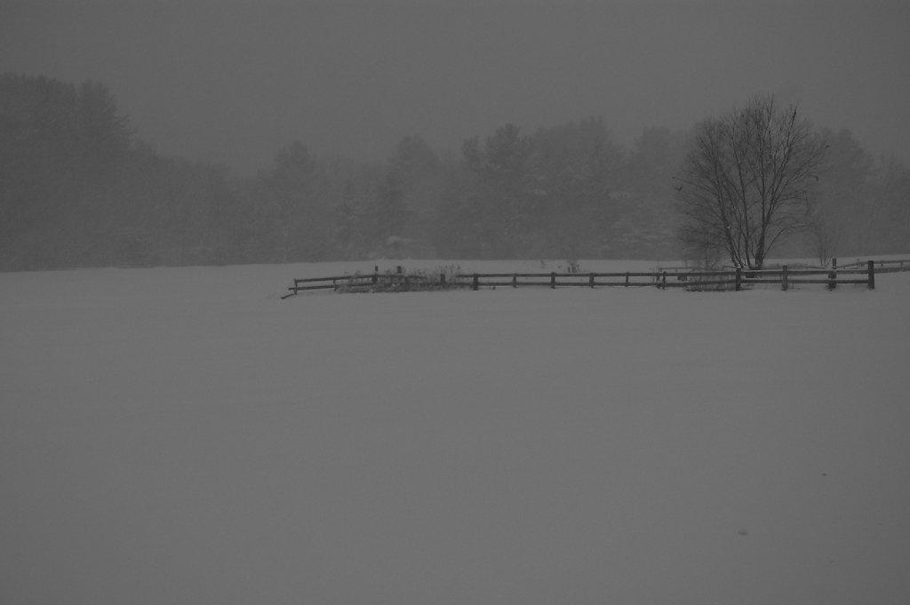 bardwell farm